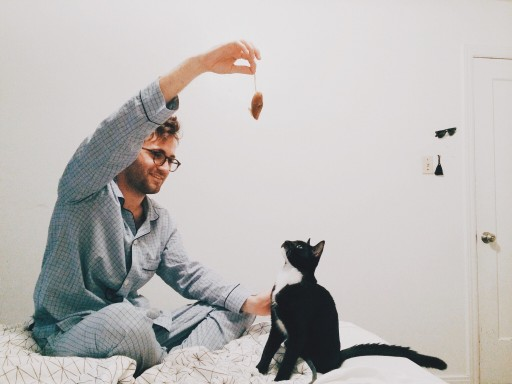 Study Reveals Men With Cats are Less Likely to Get a Date