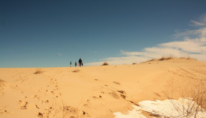 Shifting Through Time: Big Dunes at Monahans Sandhills West Park