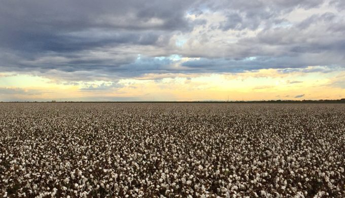 The West Texas County so Flat That it's Capital is Named Levelland